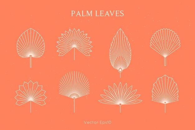 최신 유행의 최소한의 선형 스타일의 추상 야자수 세트. 벡터 열 대 잎 boho 상징입니다. 로고, 패턴, 티셔츠 인쇄, 문신, 소셜 미디어 게시물 및 이야기를 만들기 위한 꽃 그림