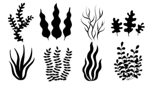 Набор водорослей, черный ил. простой вектор