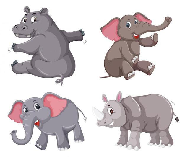 동물 캐릭터 세트