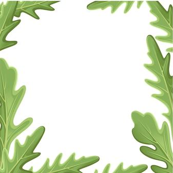 ルッコラルッコラ、ロケットサラダの新鮮な緑の葉と白い背景の上の輪郭のセットです。手描きイラスト。 webサイトページとモバイルアプリ要素