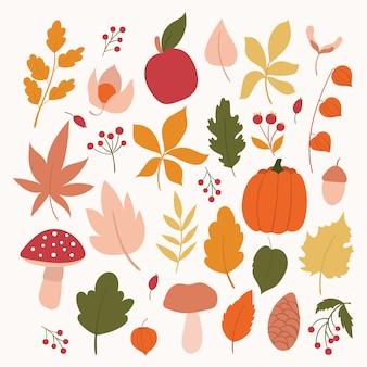 秋の要素のセットです。秋の葉、キノコ、ベリー、カボチャ、リンゴ。手描きの紅葉