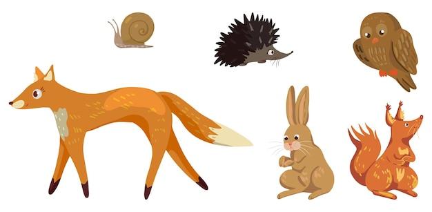 秋の森の動物のセットです。キツネ、ウサギ、ハリネズミ、リス、カタツムリ、フクロウのベクトルイラスト。白で隔離の漫画色のクリップアートコレクション。