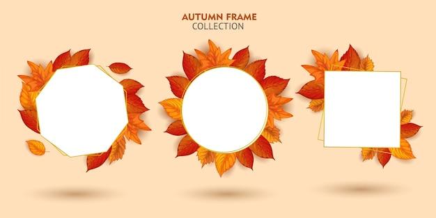 가을 프레임 컬렉션 집합