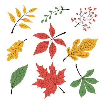 Набор осенних листьев, дуба, березы, клена. в современном стиле, красочном для вашего дизайна. векторная иллюстрация eps10.