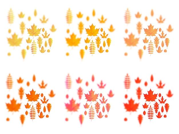 Набор осенних листьев или осенней листвы: клен, дуб или береза и рябина.
