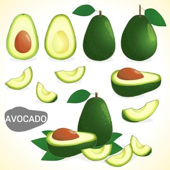 Набор фруктов авокадо в различных стилях в векторном формате