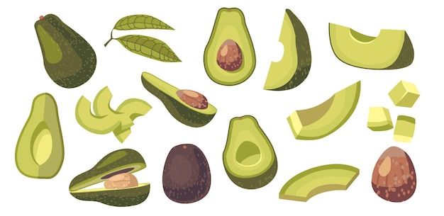 아보카도 채식 식품 성분 디자인 요소의 집합입니다. 신선한 과일 또는 야채 전체, diced 또는 얇게 썬 조각, 녹색 잎 및 흰색 배경에 고립 된 갈색 구덩이. 만화 벡터 일러스트 레이 션