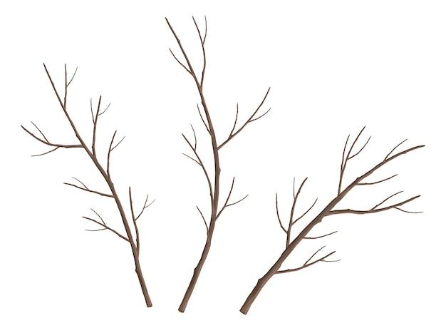 벌 거 벗은 나뭇 가지 세트