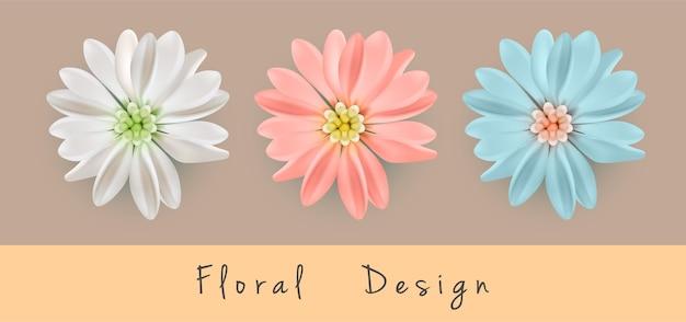 아름다운 국화 꽃 세트