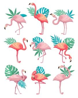 Набор красивый розовый фламинго с зелеными листьями тропических растений.