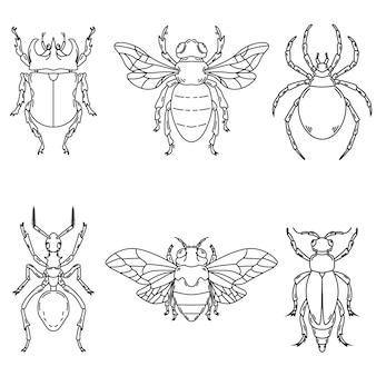 Комплект иллюстраций жука на белой предпосылке. элементы для логотипа, этикетки, эмблемы, знака. иллюстрация