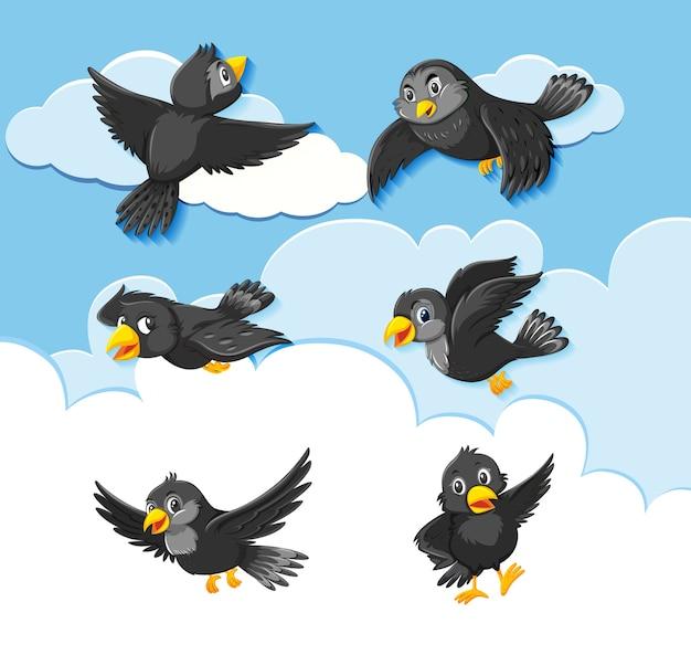 空の背景に鳥のキャラクターのセット