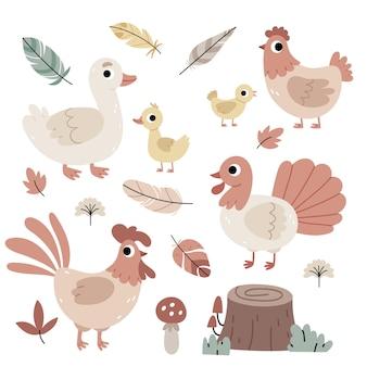 Набор птиц на ферме, сельское хозяйство, осенняя атмосфера, иллюстрация для детской книги