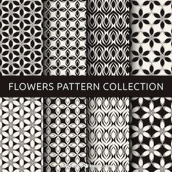 黒と白の花のパターンのセット