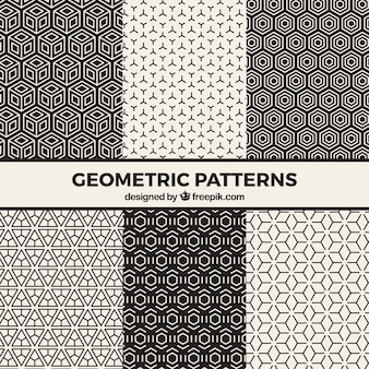 흑인과 백인 환각 패턴의 집합