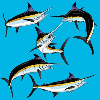 Набор black marlin для коллекции наборов gamefish