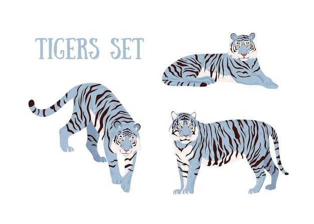Набор синих тигров. стильный вектор изолированных иллюстрация. китайский тигр.