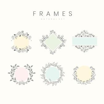 Set of botanical frame design elements vector