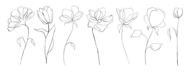 식물 라인 아트 추상 꽃의 집합입니다. 손으로 그린 스케치 꽃 잎 흰색 배경에 고립입니다. 벡터 일러스트 레이 션