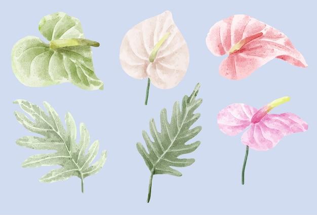 식물 식물 벡터 일러스트 레이 션, 수채화 흰색 배경에 고립의 집합
