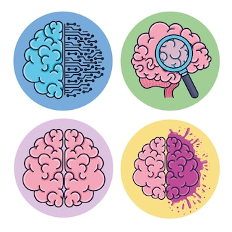 두뇌 인간 세트