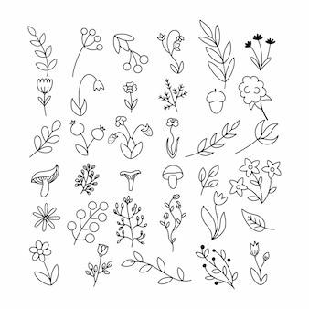 낙서 스타일의 가지와 허브 세트. 등고선으로 그린 꽃과 식물.