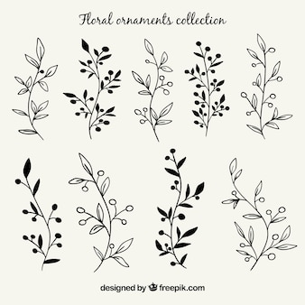 手描きの葉で枝のセット