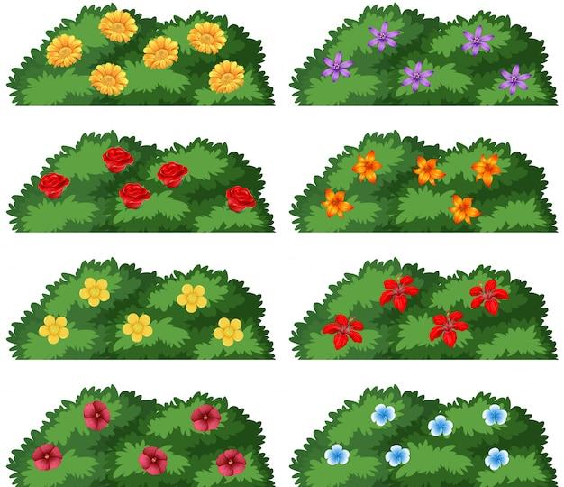 Набор кустов с цветами Бесплатные векторы