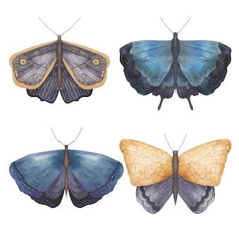 蝶と蛾の白い背景の水彩イラストのセット