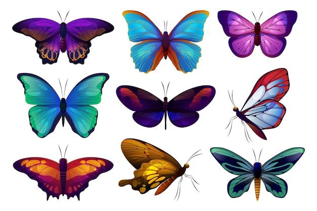 나비 또는 나방 나비 아이콘 벡터의 세트