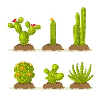 Набор кактусов в пустыне среди песка и земли, почвы
