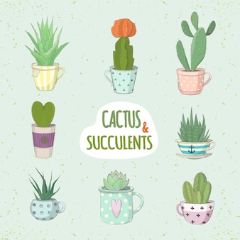 Set of cactus