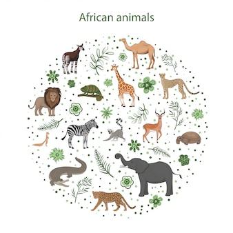 Набор мультфильм африканских животных с листьями, цветами и пятнами по кругу. окапи, импала, верблюд, ксер, лев, хамелеон, зебра, жираф лемур гепард крокодил леопард слон черепаха