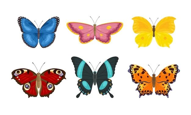 만화 나비 곤충의 집합입니다. 프리미엄 벡터