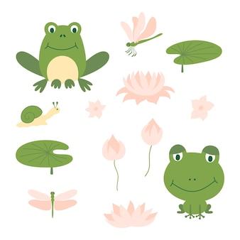 Набор мультфильм милая зеленая лягушка. смешные разные лягушки с улитками, водными растениями, листом лилии и стрекозой.