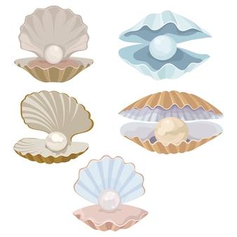漫画の貝殻と真珠のセット。貝殻。あさりのイラスト。