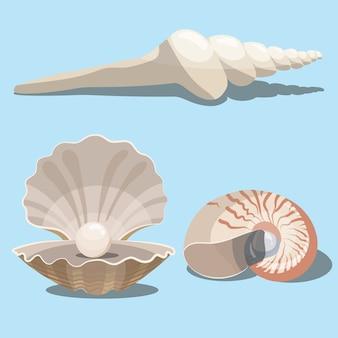 Набор мультфильм ракушек. коллекция морских раковин с жемчугом. иллюстрация моллюсков.