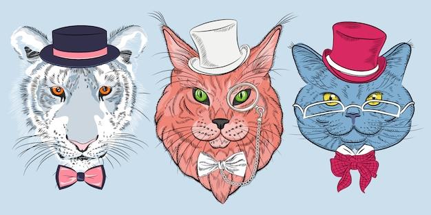 猫のヒップスターのセット