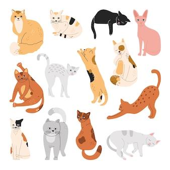 Набор кошек, забавных домашних животных, спящих, сидящих, стоящих в разных позах.