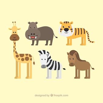 매력적인 동물 세트