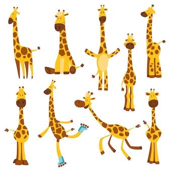 긴 목을 가진 쾌활 한 재미 기린의 집합입니다. 성장을 측정하기위한 높이 미터 또는 미터 벽 또는 벽 스티커 (0 ~ 150 센티미터). 어린이 그림