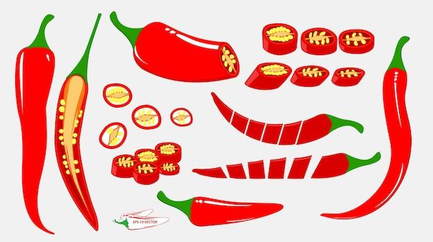 Набор острого перца чили или чили пищевой ингредиент концепции eps вектор