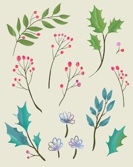 수채화 물감으로 크리스마스 식물 요소 디자인 세트