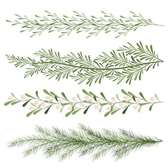 크리스마스 식물의 집합입니다. 겨우살이, 침엽수 가지의 어린 가지. 긴 풍경. 흰색 바탕에 새 해 그림