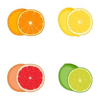 柑橘系の果物(オレンジ、レモン、グレープフルーツ、ライム)、ベクトル図のセット