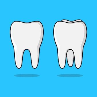 きれいな歯のイラストのセット。きれいな歯フラット