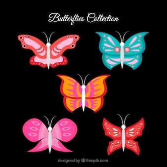 色の蝶のセット