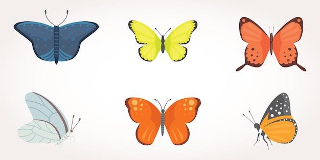 カラフルな蝶のデザインイラストのセット