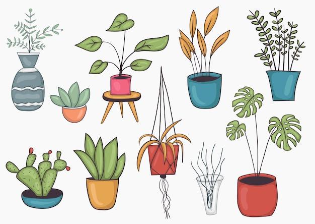 カラフルな手描きの鉢植えのイラストのセット