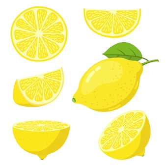 カラフルなレモンデザインのセット
